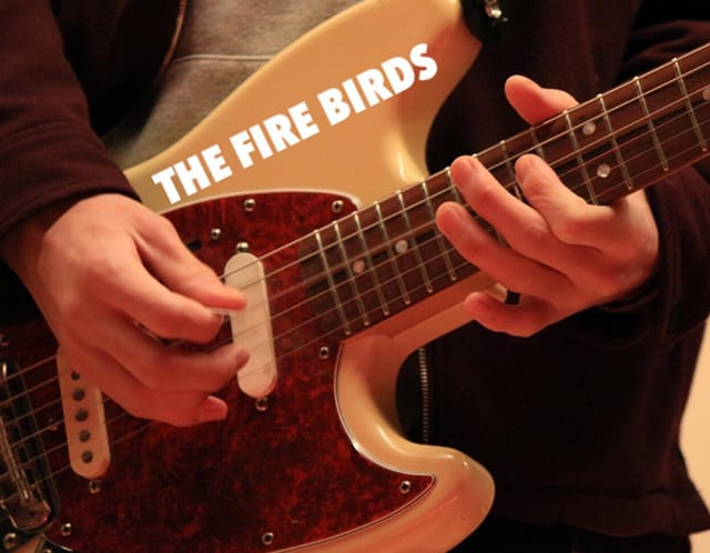 THE FIRE BIRDS